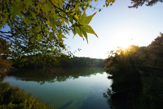 早朝|朝日と池の写真