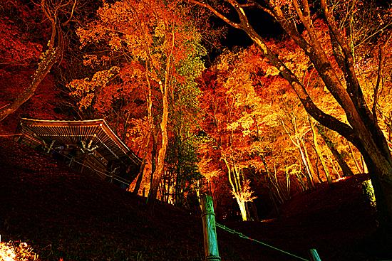 香嵐渓の紅葉と六角堂がライトアップされた写真