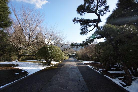 箱根にある恩賜箱根公園の展望台への道