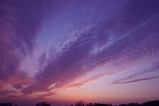夕方の西空