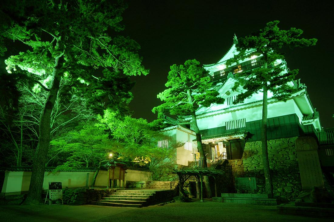 ライトアップされた岡崎城天守閣の画像
