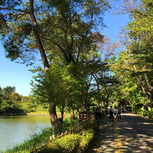 東公園の池