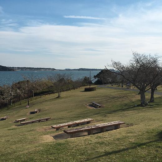浜名湖サービスエリアから公園と海を撮った写真