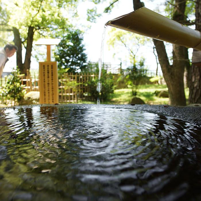 つくばい 手水鉢の水紋の写真