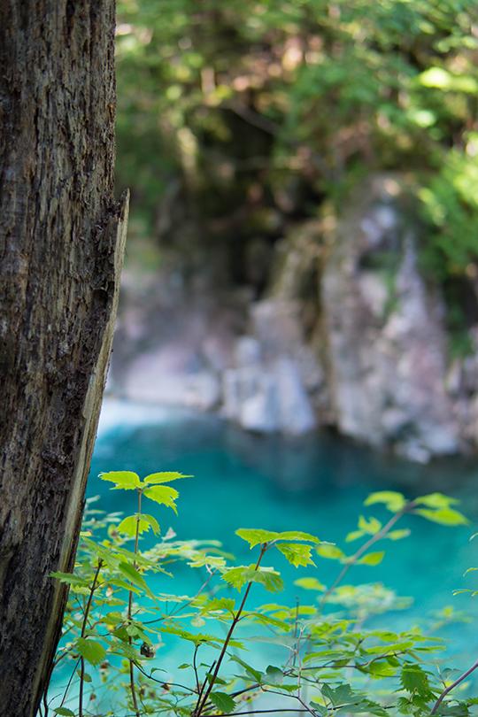 長野県木曽郡大桑村にある阿寺渓谷のブルーグリーンの水