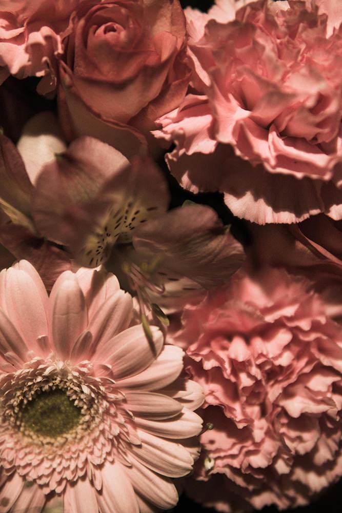 彩度を抑えたピンク色の花の写真