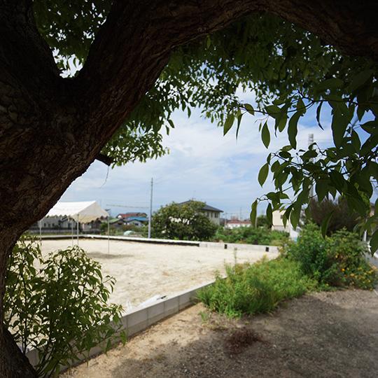 木陰から見た敷地の写真